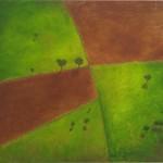 4. Aerial Rural I
