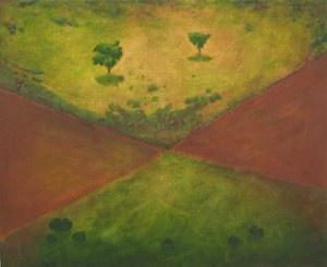 5. Aerial Rural II